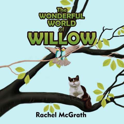 Wonderful World of Willow Rachel McGrath